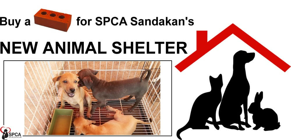 Support Your Local SPCA