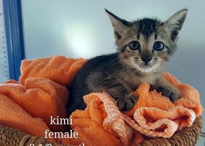 Kimi – 2.5 months